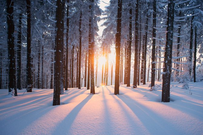 Christmas Meditation: The Sun of Righteousness
